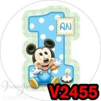 V2455 - MICKEY