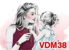 VDM38